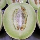 Picture of HONEYDEW MELON CUT 1/2