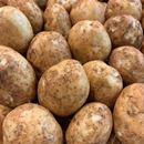 Picture of POTATO - BRUSHED