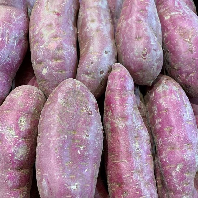 Picture of POTATO - PURPLE SWEET