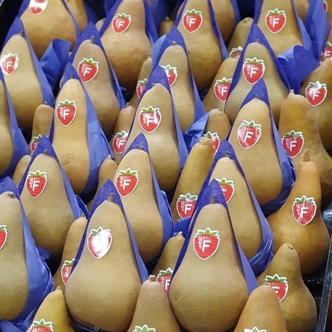 Picture of BROWN PEARS