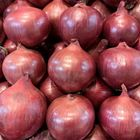 Picture of ONION - SPANISH
