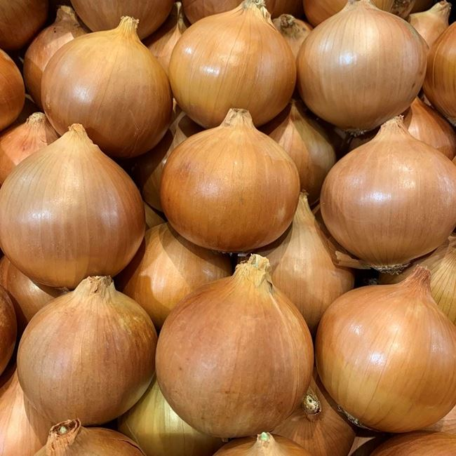 Picture of ONION - BROWN