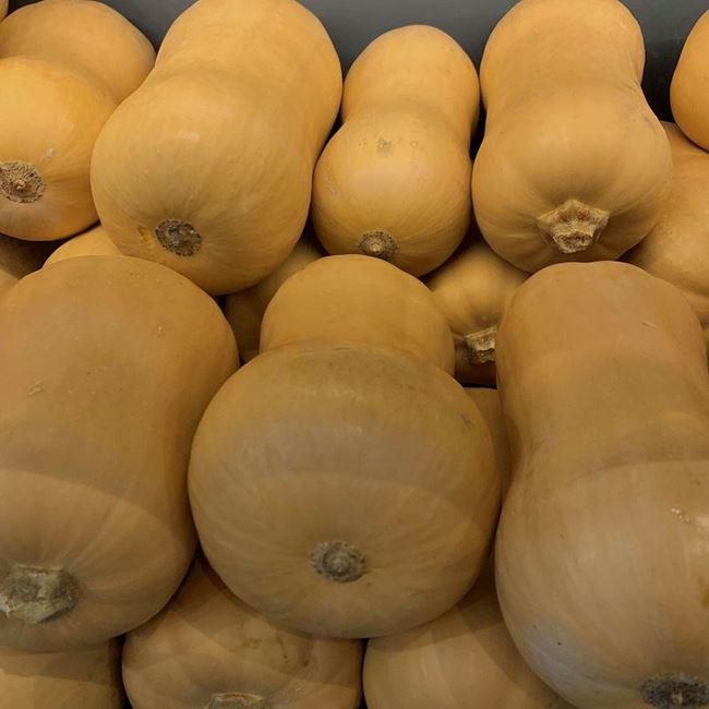 Picture of PUMPKIN - BUTTERNUT (WHOLE)