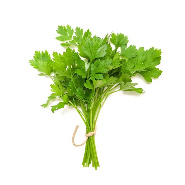 Picture of CORIANDER (bunch)