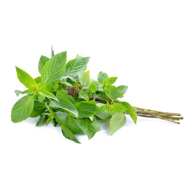 Picture of THAI BASIL (bunch)