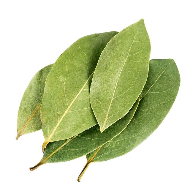 Picture of FRESH  BAY LEAVES (20g)