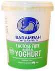 Picture of BARAMBAH LACTOSE FREE NATURAL YOGHURT