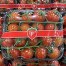 Picture of TOMATO - BABY CHERRY TRUSS