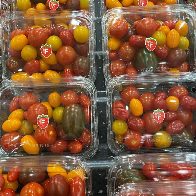 Picture of TOMATO - MEDLEY (PUNNET)