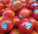 Picture of APPLE - JAZZ