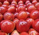 Picture of APPLE - PINK LADY VALUE