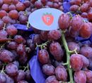 Picture of GRAPES - PREMIUM RED (BUNCH)