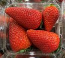 Picture of STRAWBERRIES (PUNNET)