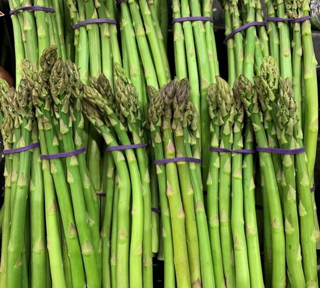 Picture of ASPARAGUS BUNCH