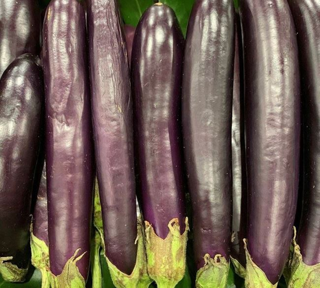 Picture of BABY EGGPLANT