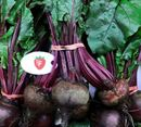 Picture of BEETROOT (BUNCH OF 3)